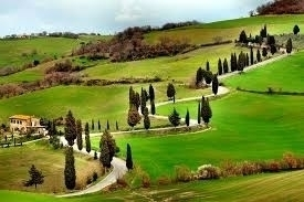 Val d'Orcia e Montepulciano - full day by minivan -  Enocuriosi di Wine and Tours