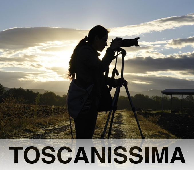 TOSCANISSIMA - Wine and Tours by Enocuriosi