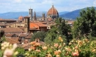 Florence and Carmignano - Wine and Tours by Enocuriosi