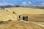 Montalcino & Crete Senesi - Half day tour -  Enocuriosi by Wine and Tours