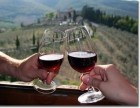 Chianti & Castle tour - half day by Minivan - Wine and Tours by Enocuriosi