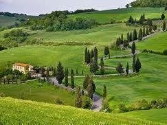 Tuscan Farm: sensitivity and attention to the authentic values of Nature -  Enocuriosi by Wine and Tours