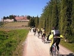 Chianti by Bike from Siena -  Enocuriosi by Wine and Tours