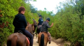 Montalcino and Orcia Valley Ride - Wine and Tours by Enocuriosi