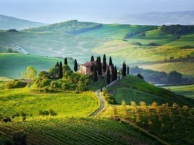 San Gimignano, Chianti & Montalcino - full day by Minivan -  Enocuriosi by Wine and Tours