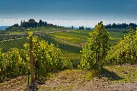 Chianti wine tour - Half day tour - Wine and Tours by Enocuriosi