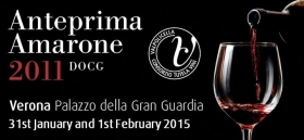 Anteprima Amarone 2011 - Wine and Tours by Enocuriosi