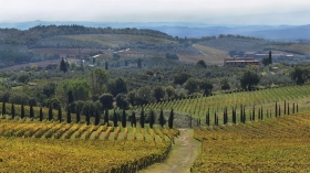Tuscany in a week -  Enocuriosi by Wine and Tours
