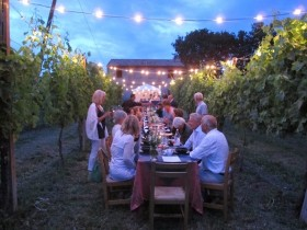 Dinner in the Chianti Vineyards - by Minivan -  Enocuriosi by Wine and Tours