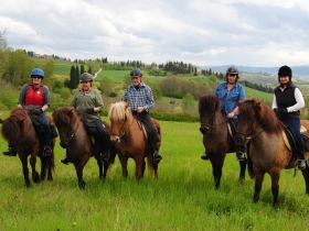 Horseback riding from Siena -  Enocuriosi by Wine and Tours